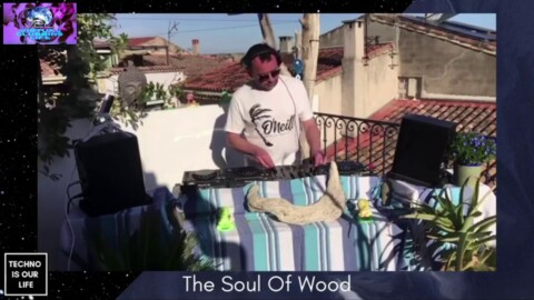 THE SOUL OF WOOD #Techno Is Our Life #Festival April 2021 #Montpellier